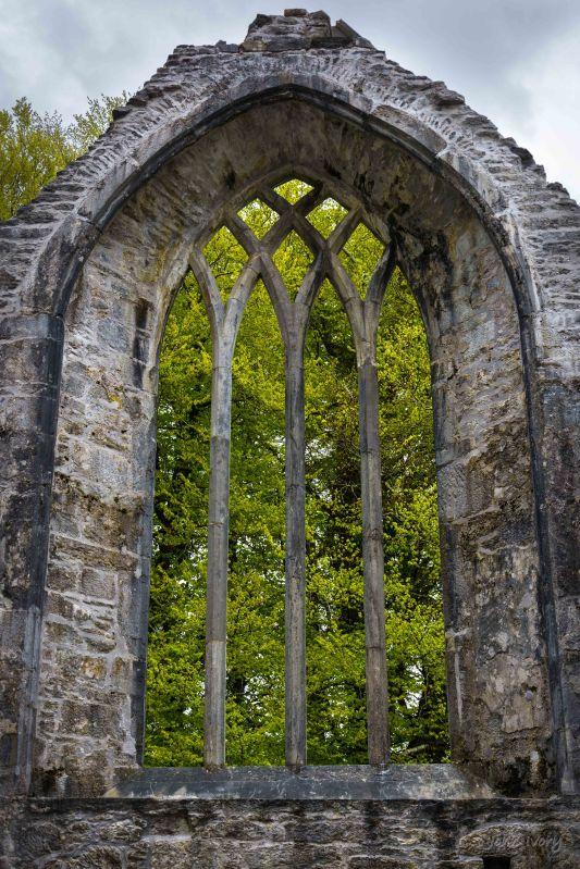 Muckross Abbey - 02-05-2014 #10