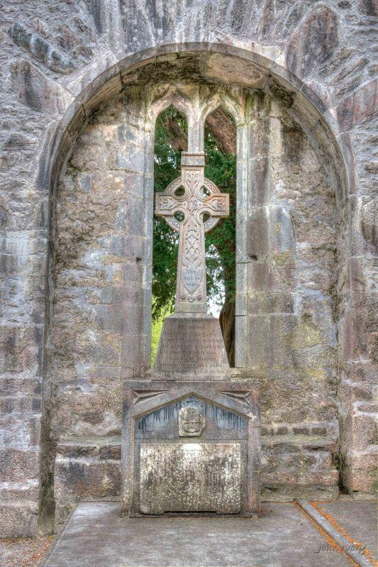 Muckross Abbey - 02-05-2014 #13