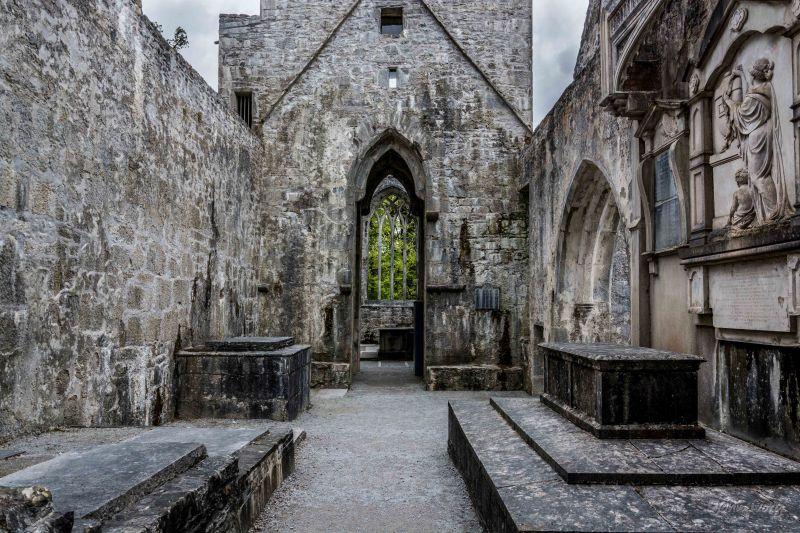 Muckross Abbey - 02-05-2014 #16