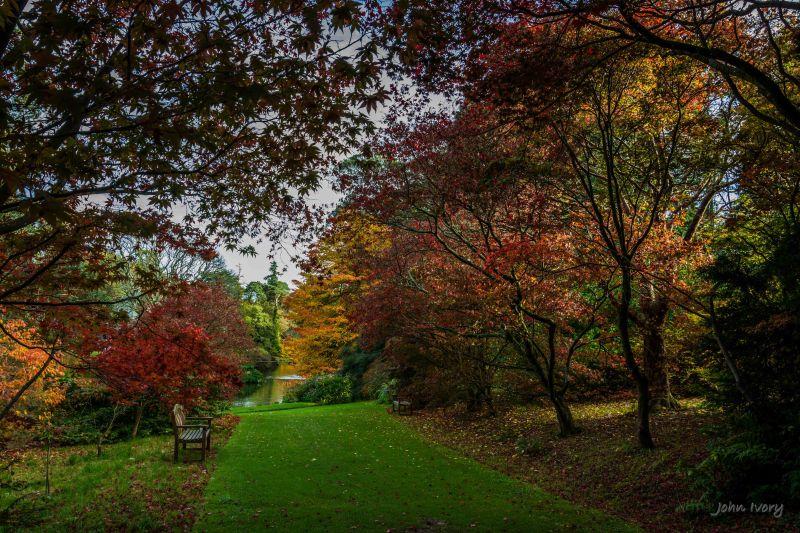 Mount Usher - 23-10-2014 #16