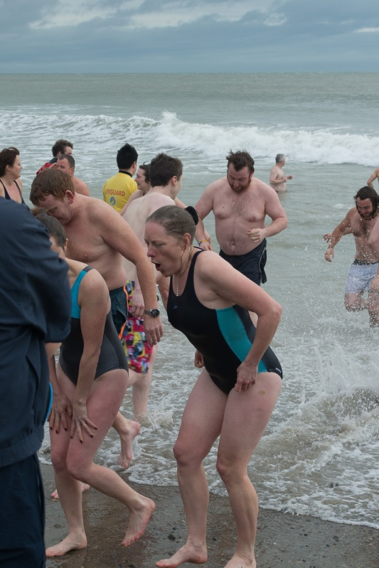 New Year Swim 2015 - 25