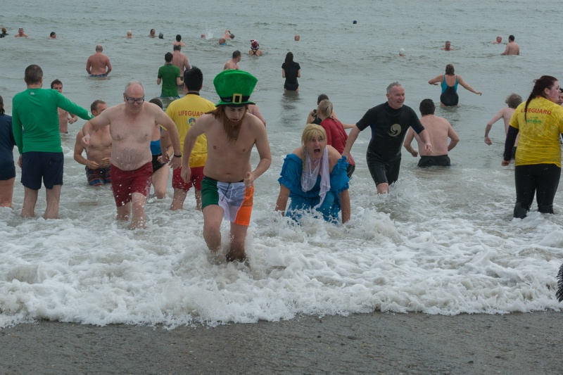 New Year Swim 2015 - 42