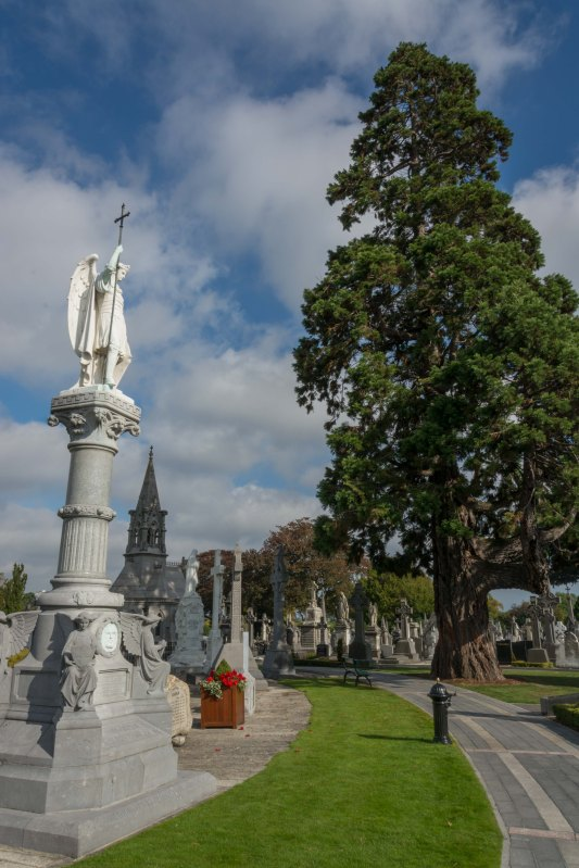 Glasnevin Oct 2015 #16