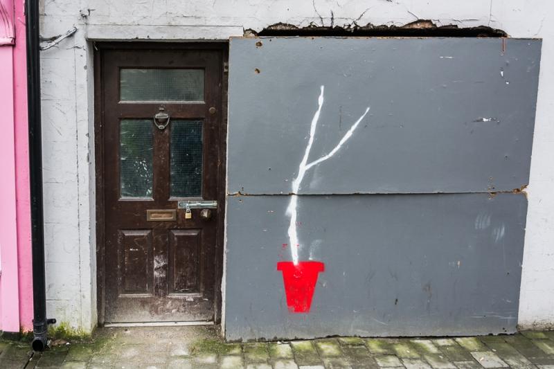 Kilkenny Blog #19