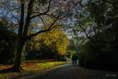 stephens-green-nov-2016-10